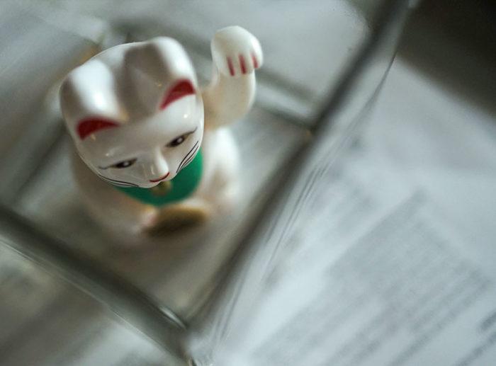 Plastic cat